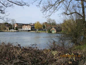 Shepperton Yacht Club from Desborough Island